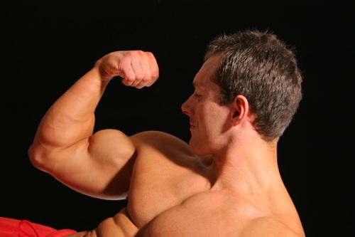 alimentatie definire musculara