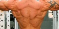 Imaginea articolului: Exercitii pentru spate
